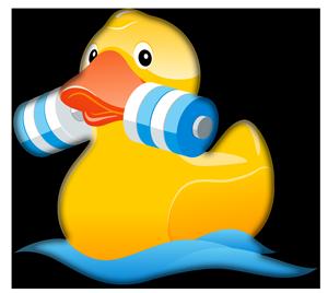 Wassersport Ente